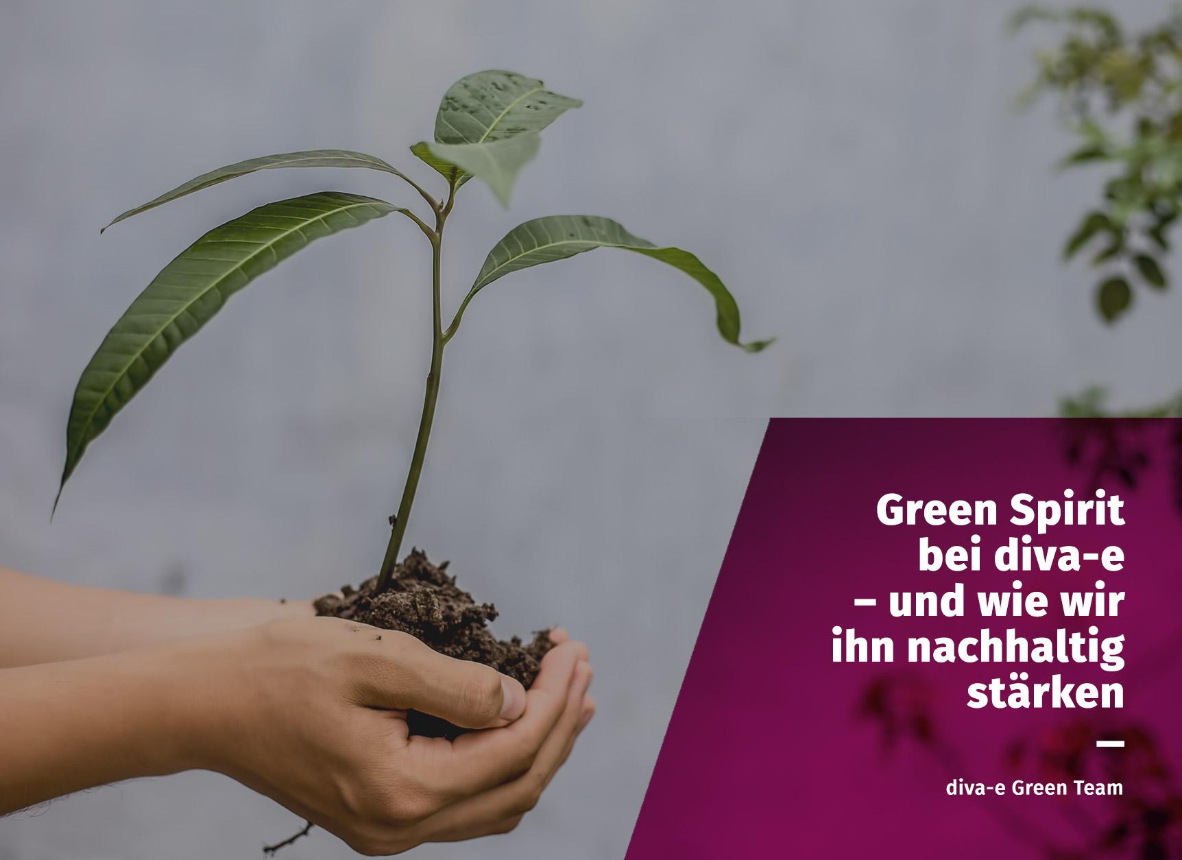 Green Spirit bei diva-e – und wie wir ihn nachhaltig stärken