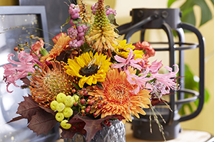 Floral arrangement, sunflower, gerbera, leucospermum, pincushion flower, nerine, kniphofia, bunch, bouquet, botanical stock photography