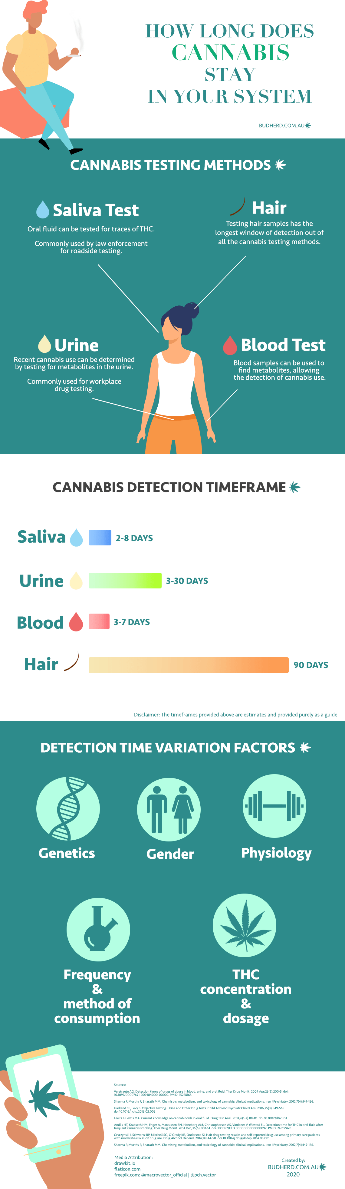 Infographic: how long does marijuana stay in your system