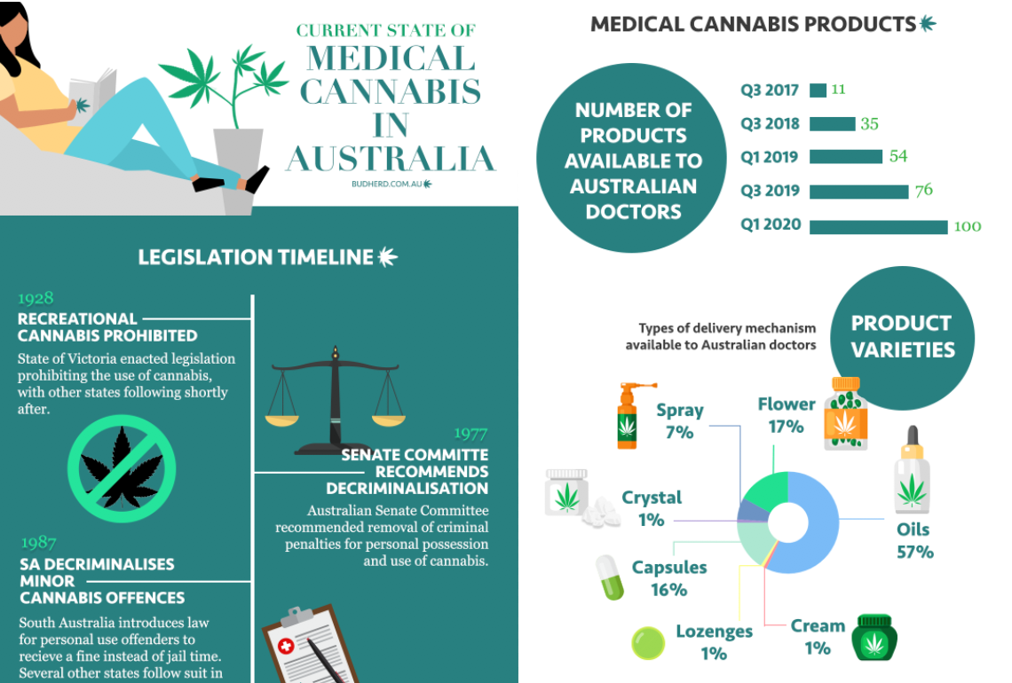 article image for Infographic: The current state of medicinal cannabis in Australia