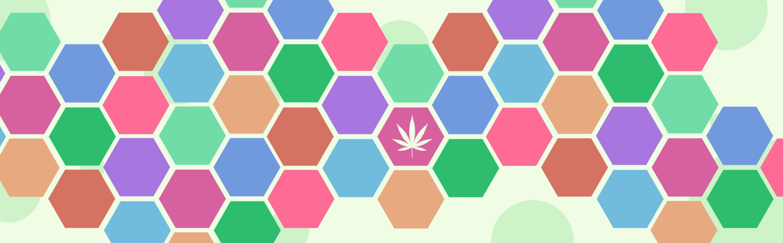 Australian Cannabis Stories | BUDHERD - cover