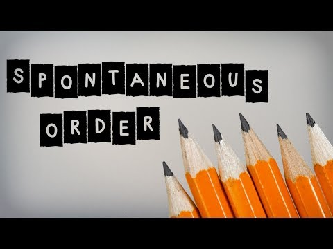 Image for Spontaneous Order video
