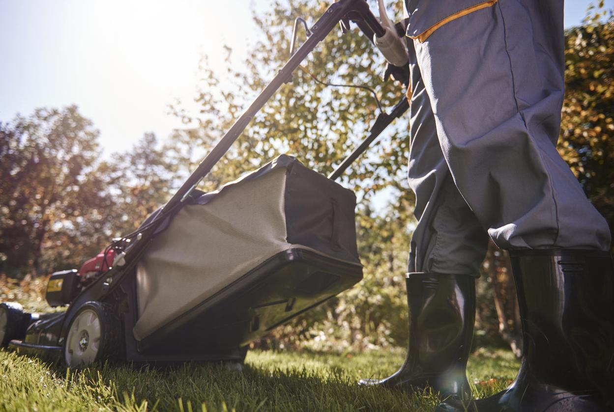 Betriebskostenabrechnung: Gartenpflege