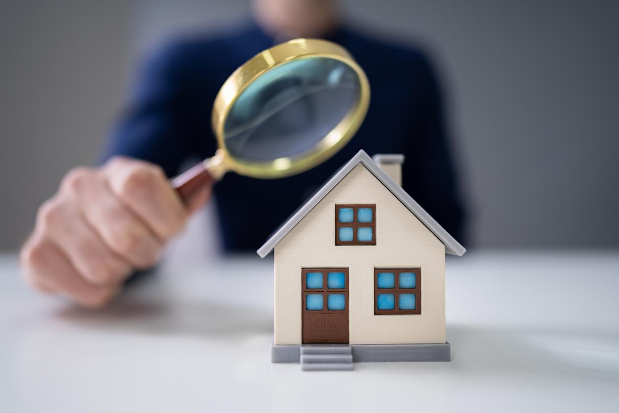 Immobilienbewertung Programm: Daten und Informationen