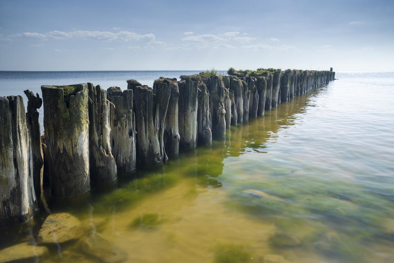 Quadratmeterpreise: Ostseeküste