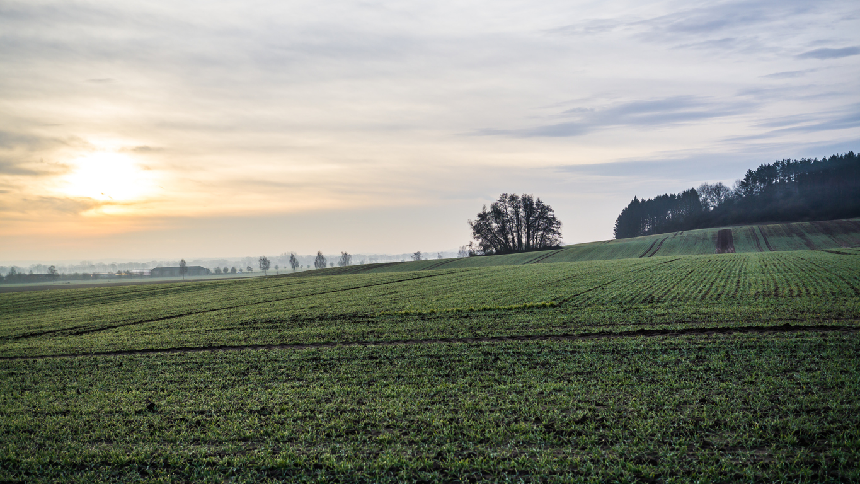 Bodenrichtwerte ermitteln: Bodenrichtwertgrundstück