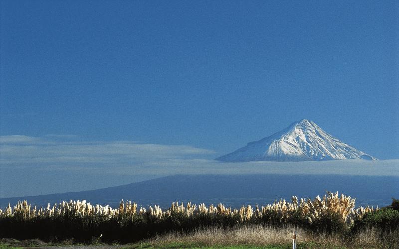 新年去紐西蘭旅遊