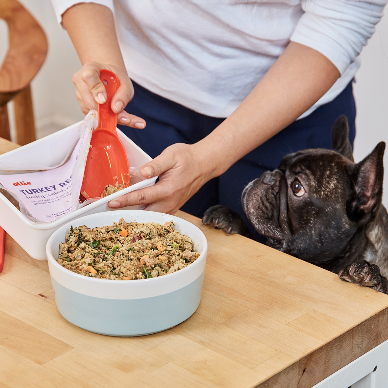 A bowl of Ollie's fresh turkey recipe on a table with a dog looking at it.