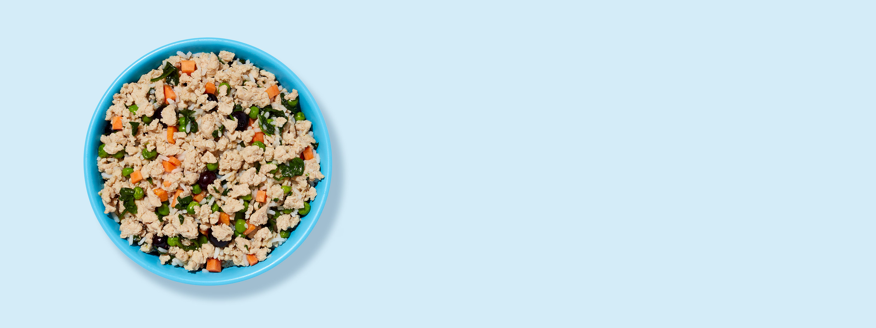 A bowl of Ollie's fresh dog food chicken recipe.