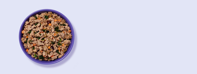 A bowl of Ollie's fresh dog food turkey recipe.