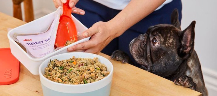 A bowl of Ollie's fresh food on a able with a dog looking at it.