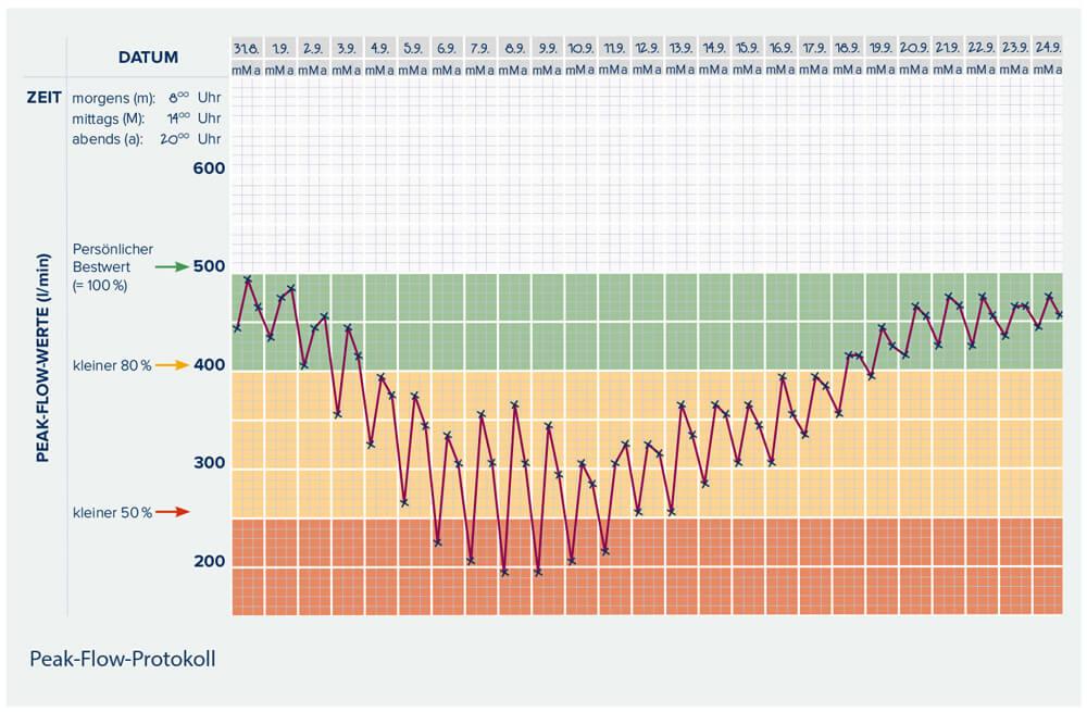 Individuelle Peak-Flow-Messung