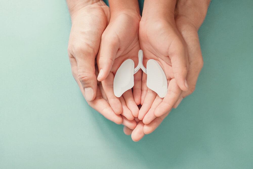 Lunge wird symbolisch in Händen gehalten