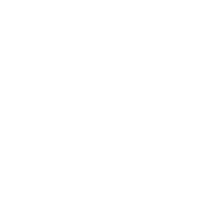 save_a_lot
