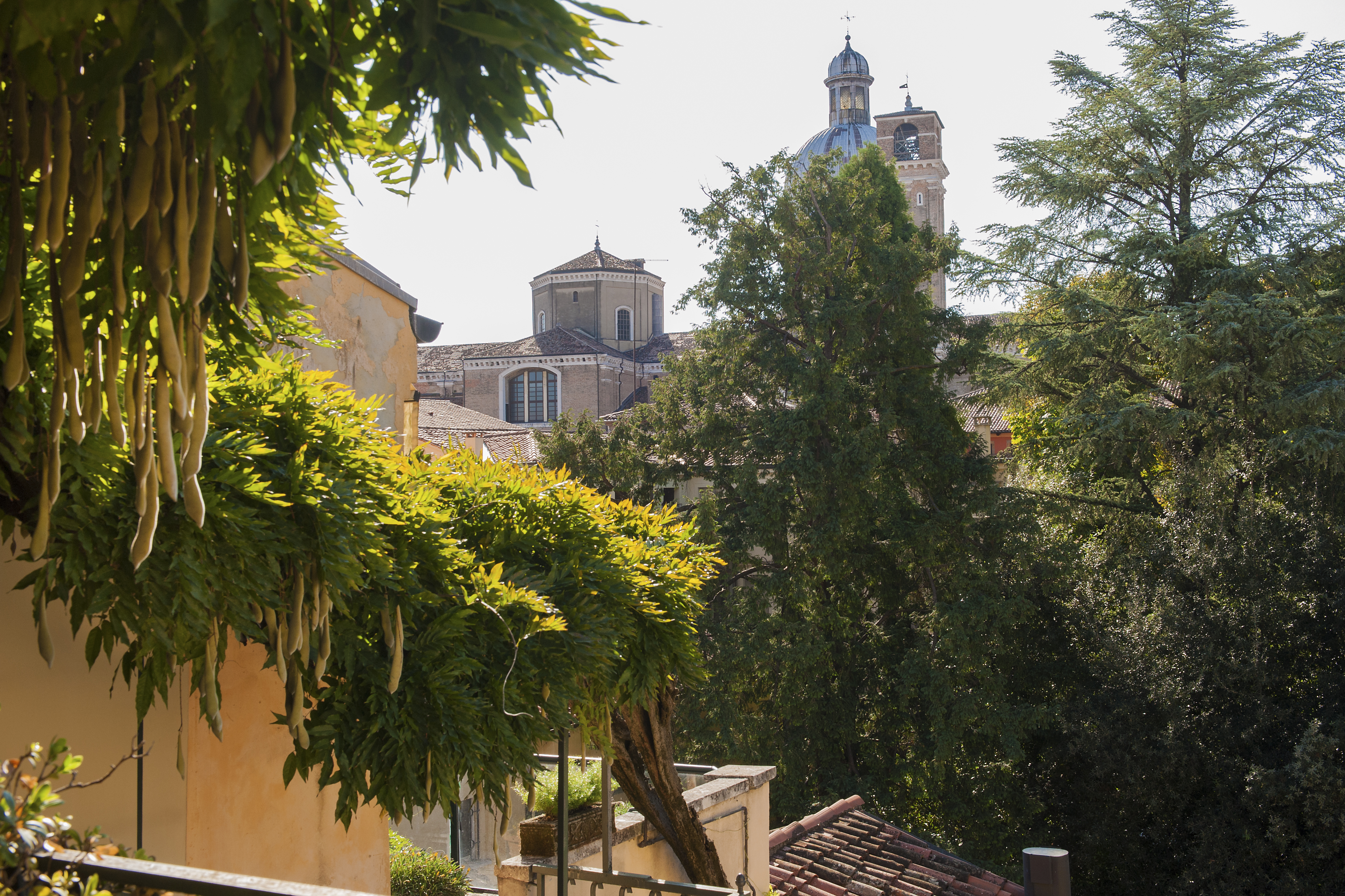 Private terrace view of secret garden, old trees and Duomo in Padova, Italy