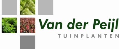 NL preferred grower Van der Peijl