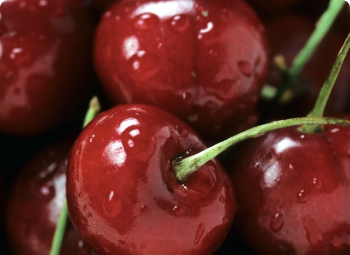 Extreme close up of cherries