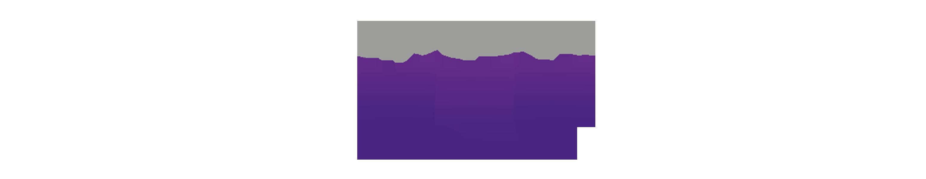 logo vyv